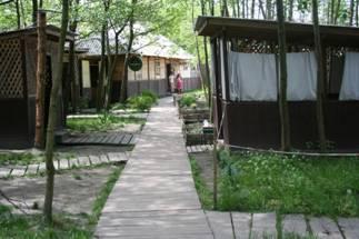 Страусина ферма Київській області