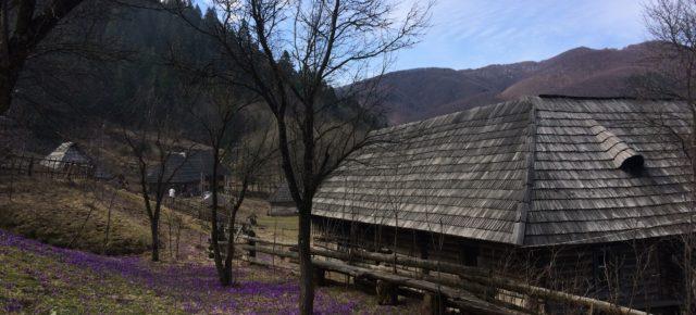 Казкове весняне Закарпаття приваблює!